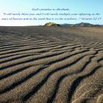 """Sand on Seashore"" by Wintercreeks"