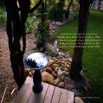 """Garden Reflection"" by Wintercreeks"