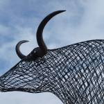 """Longhorn Wire"" by GlendinePhotography"