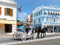 Hamilton Bermuda Carriage Ride