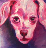 Galaxy Dog in Magenta