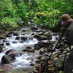 """Photographing on Jackson Creek, Glacier Natl Park"" by JohnChaoPhoto"