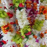 """Hawaiian Leis"" by joeyartist"