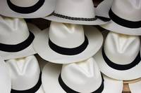 White Panama Hats