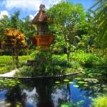 """""""Garden Dream"""" by StudioArtsGroup"""