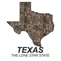 Texas The lone star state solid
