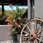 """Old Wagon Wheel"" by GordonBeck"