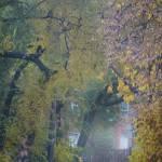 """Autumn drive"" by lightbehaviour"