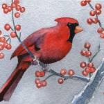 """Cardinal"" by k9artgallery"