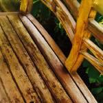 """""""Garden Bench"""" by StudioArtsGroup"""