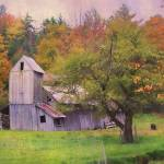 """That Old Gray Barn"" by JohnRivera"