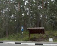 Bus Stop Lithuania