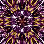 """Abstract Stain Glass Flower"" by ecolosimo"