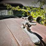 """Ford 56 Hood Ornament HDR"" by LunarImage"