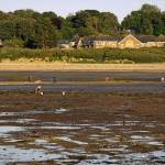 """Bait Digging At Bembridge"" by rodjohnson"
