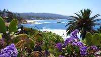 Heisler Park in Bloom