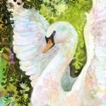 """""""Swan"""" by JENLO"""
