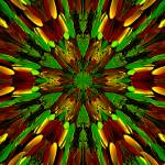 """Abstract Stain Glass Harvest Season Flower"" by ecolosimo"