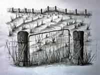 Old Farm Field and Gate