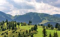Mountain view in Bucovina