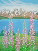 Fireweeds in Alaska