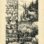 """""""1967-05"""" by Nachshonart"""