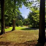 """Stanley Park Vancouver Sept 2011 2"" by PriscillaTurner"