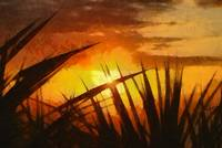 Sunset - ID 16235-142750-3294