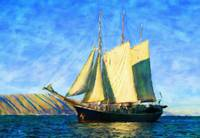 Sailboat - ID 16235-142825-0706