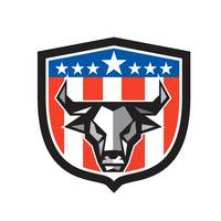 bull-head-front-USA-FLAG-CREST-LOWP_5000