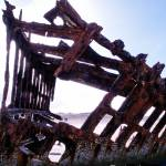 """Shipwreck of the Peter Iredale 072"" by Wintercreeks"