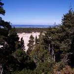"""Oregon Dunes 023"" by Wintercreeks"
