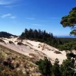 """Oregon Dunes 022"" by Wintercreeks"