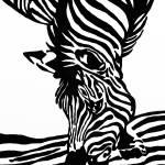 """""""zebra weiss"""" by gabii40"""