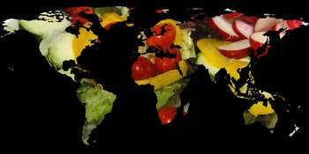 World Map Silhouette - Vegetable Salad