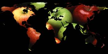 World Map Silhouette - Apples