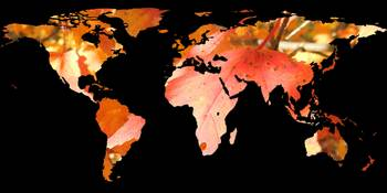 World Map Silhouette - Fall Leaves