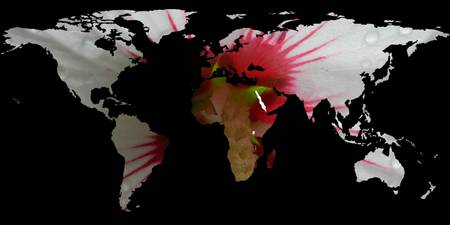World Map Silhouette - Hibiscus Flower