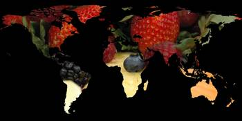 World Map Silhouette - Mixed Fruit