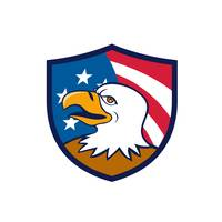 bald-eagle-smiling-USA-FLAG-CREST_5000