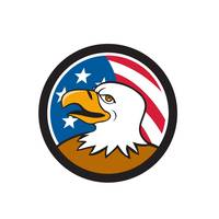 bald-eagle-smiling-USA-FLAG-CIRC_5000