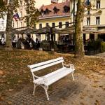 """Ljubljana Bench"" by raetucker"