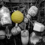 """BW Bouys will be Bouys with color"" by memoriesoflove"