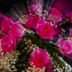 """Pink_Roses_Bouquet_Explosion"" by lightningman"