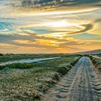 Jericoacoara National Park Dunes Road Art Prints & Posters by Daniel Ferreira-Leites
