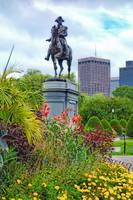 Boston Common Study 6