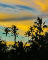 Tropical Scene at Sunset Time