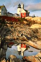 Pemaquid Point Lighthouse and Tidal Pool Reflectio