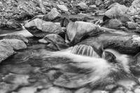 Black and White Peaceful Stream