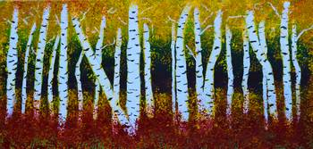 Birch Tree Forest 93016 copy